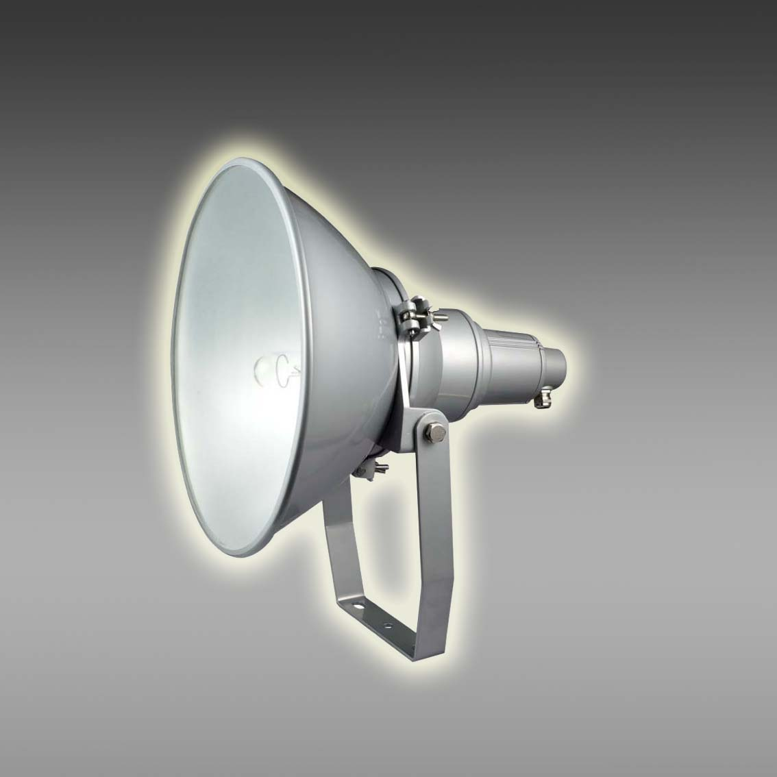 防震型投光灯 JNT2210